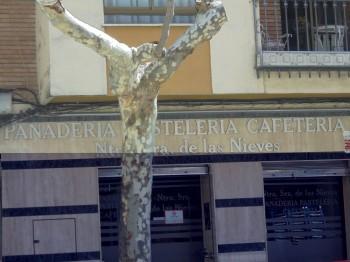 Pastelería Nuestra Señora de las Nieves