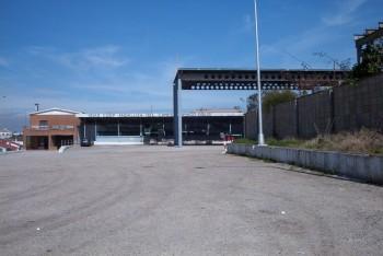 Sdad. Cooperativa Andaluza Domingo Solís